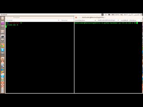 PinPoint Victims - Python Botnet