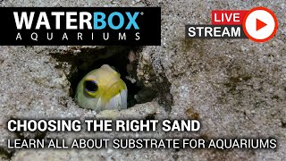 Choosing the right type of sand for your reef aquarium.
