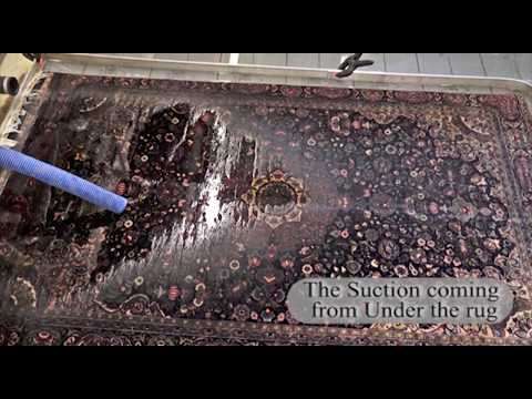 Cleaning Oriental Rug from Urine Odor Organic