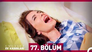 Download Umutsuz Ev Kadınları 77. Bölüm Video