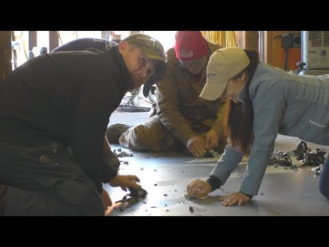Diesel Jet Boat Build - Part 3 - Lofting and Cutting