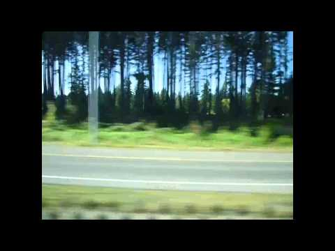 Bus trip Seattle to Vancouver, The silent circus - Foxholes