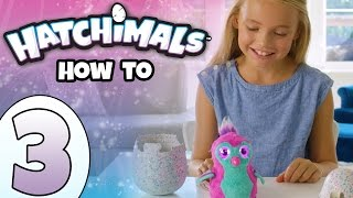 How To Play With Your Hatchimals