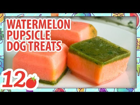 How to Make: Watermelon Pupsicle Dog Treats