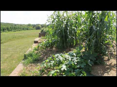 tsyunhehqwa, Oneida Native American farm