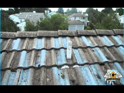 Bellevue Tile Roof Cleaning Call Now (425) 533-0382