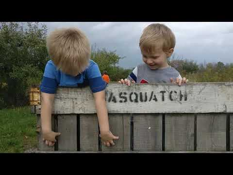 My son and his cousin trying to say Sasquatch