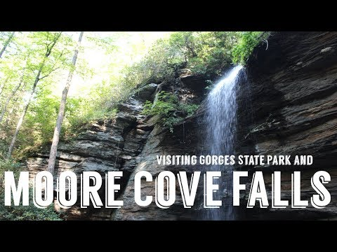 Moore Cove Waterfall | Gorges State Park | Wandering Around In Wonder