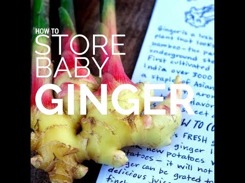How to Store Baby Ginger
