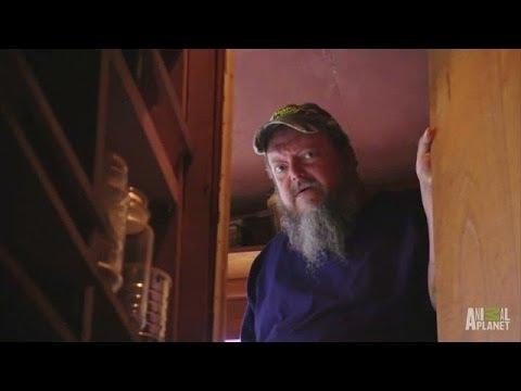 Neal's Deep, Dark, Snaky Secret   Call of the Wildman