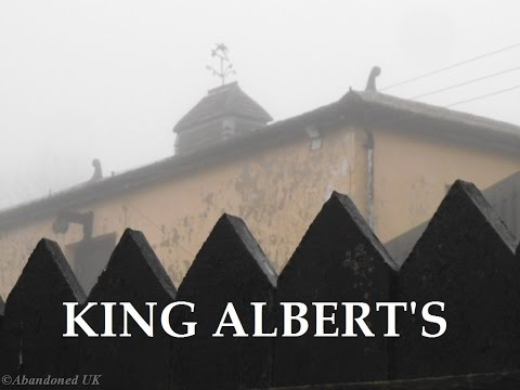 King Alberts (Tillingdown Farm)