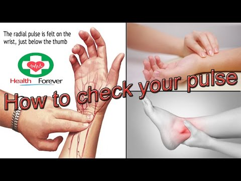 How to check pulse rate | How to check pulse rate on wrist