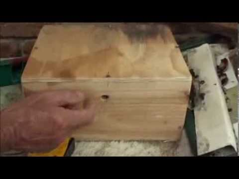 Our AUSTRALIAN NATIVE TRIGONA STINGLESS BEEHIVE Introduction. #1