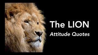 Just watch me / best lion / Attitude status video