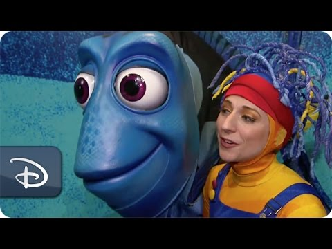 Meet the Puppeteers at 'Finding Nemo - The Musical' | Walt Disney World