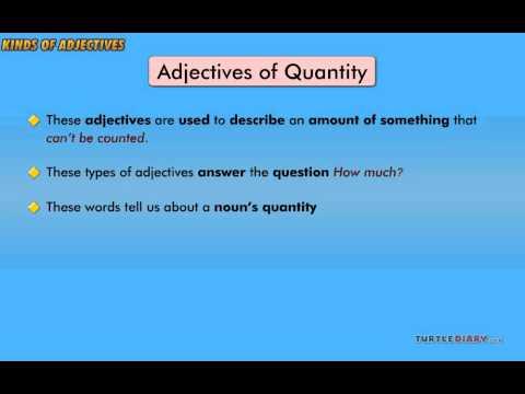 Grammar Video for Kids: Kinds of Adjectives