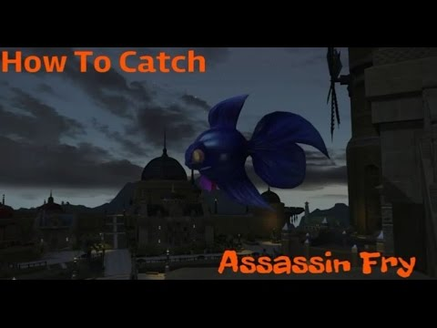FFXIV - How to Catch the Assassin Fry Minion -