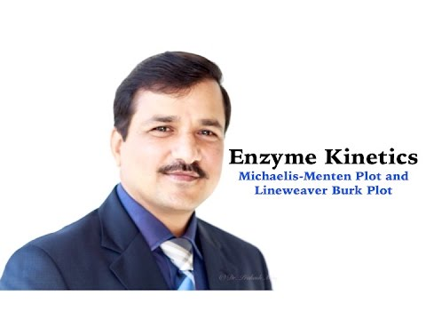 Enzyme Kinetics Part 3 - Michaelis-Menten and Lineweaver Burk Plot