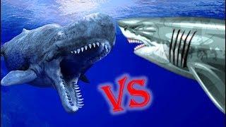 Megalodon Vs Livyatan Melvillei Who Would Win?