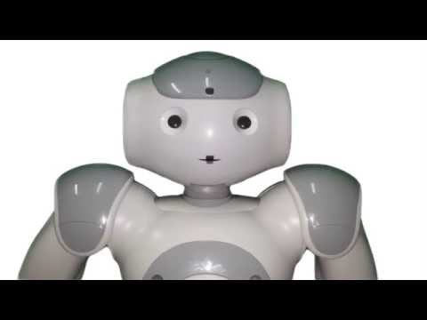 Making Human Robot Interaction Accessible To Everyone Through Online Videos