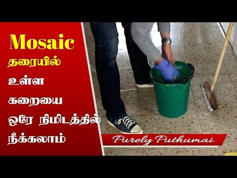 How to clean & remove Stains from Mosaic flooring | Cleaning floors and tiles | Home Tips in Tamil