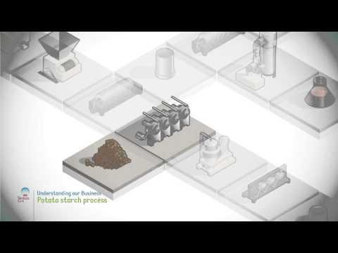 Potato starch process