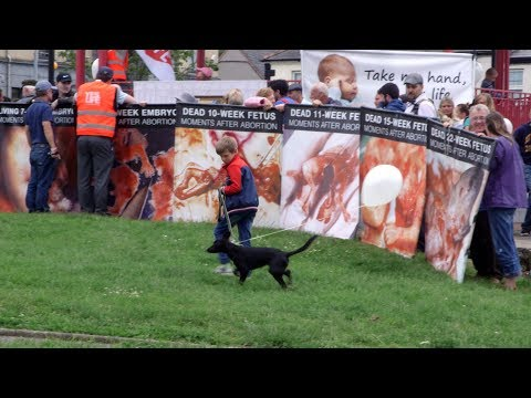 Ireland's anti abortion campaigners