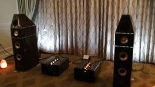 Genesis speakers with Viva Audio amps