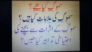 What Is Smog in Urdu / Hindi?