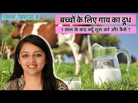 बच्चों के लिए गाय का दूध || 1 साल के बाद क्यूँ शुरू करे और कैसे ? || COW MILK FOR BABIES?