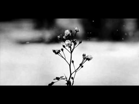 Chopin - Spring Waltz (Mariage d'Amour) [Please Read Description]