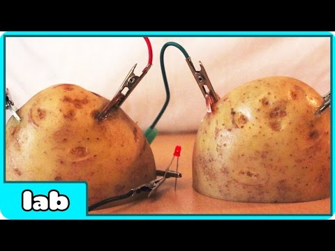 Cool Science Experiment - Potato Battery