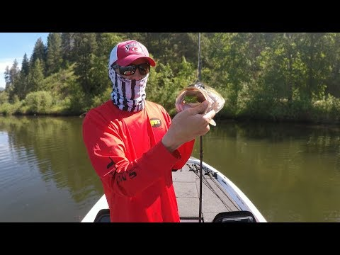 Topwater Largemouth Bass Fishing [KVD Sexy Frog]