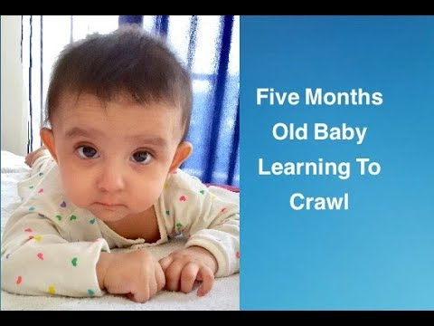 5 month baby Saanvi learning to crawl
