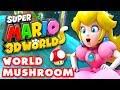 Super Mario 3D World - World Mushroom 100% ...