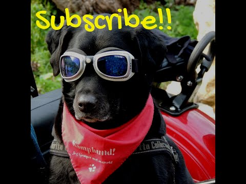 🔳How to make a custom subscribe button on YouTube
