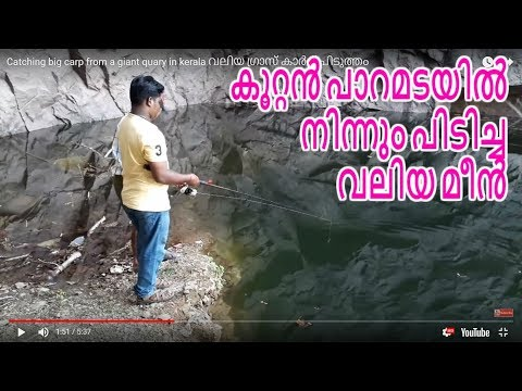 Catching big carp from a giant quary in kerala
