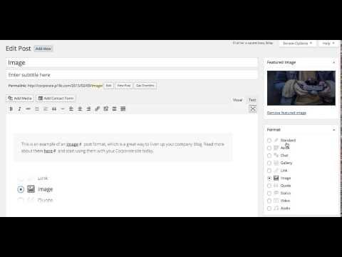 Corporate WordPress Theme: Choosing Post Formats