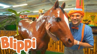 Blippi Explores Jungle Animals!! | Animals for Kids | Educational Videos For Kids
