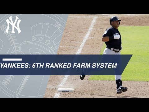 Highlights of the Yankees' top prospects