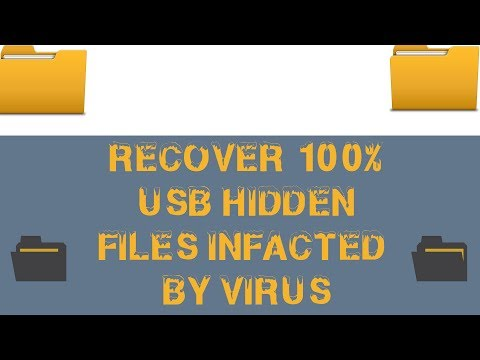 How To Show Hidden Files of USB 100% Infected By Virus Using CMD Step by Step