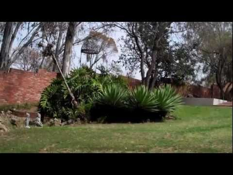Bed and Breakfast - Randburg, South Africa