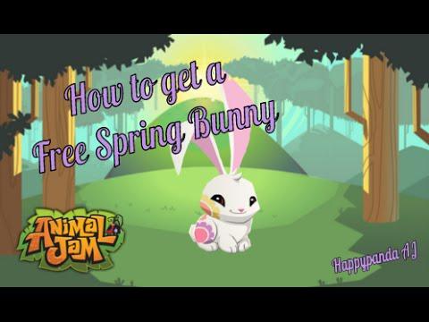 Animal Jam- Free Spring Bunny Glitch