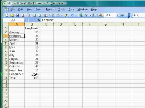 Excel Tutorial 2 of 25 - AVERAGE Formula