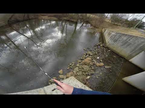 Bluegill fishing in Winter January 21, 2018 Chesapeake Bay