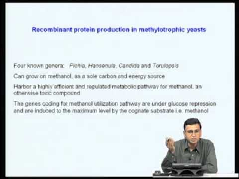 Mod-08 Lec-30 Eukaryotic protein expression systems - I