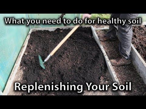 Replenishing Your Garden Soil for Vegetable Abundance
