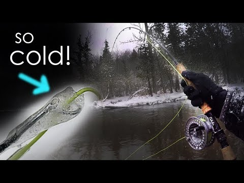 Fly Fishing in a WINTER STORM! FREEZING COLD Steelhead Action