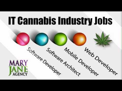 Cannabis IT Staffing & Recruiting - MaryJaneAgency.us