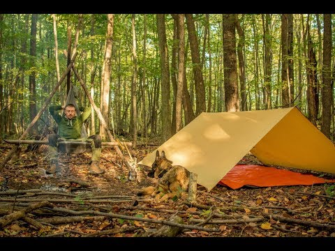 Overnight Bushcraft Camp With My Dog Pt1  Tripod for Boiling Water Scout's Birthday, Pit Cooking.